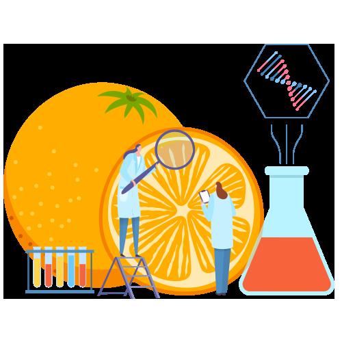 Nutritional biochemical translations