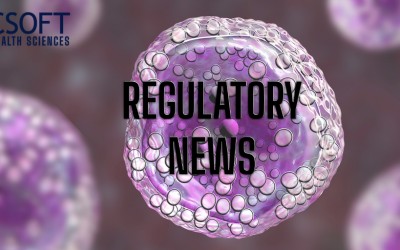 B-Cell Lymphoma Drug Receives FDA Priority Review